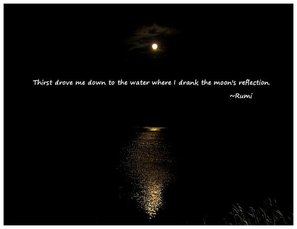 jalal-ad-din-rumi-quotes-deep-sayings-thirst.jpg (600×462)